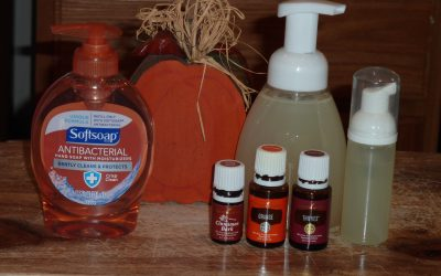 Boxed-to-Basics: Homemade Foaming Hand Soap